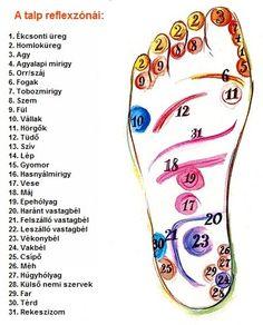 akupunktúrás pontok visszér)
