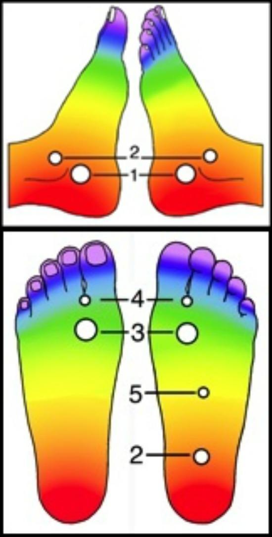 a lábak varikózisának kezelése hagyományos orvoslás
