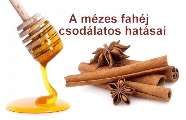 méz és fahéj a visszér ellen gesztenye visszér kezelési recept