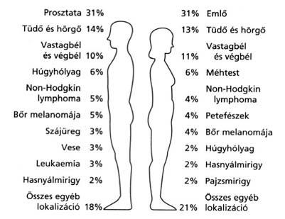 Amit az allergiáról tudni érdemes - Asztma, Rhinitis, Ételallergia