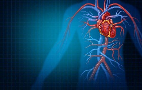 Mélyvénás trombózis tünetei és kezelése