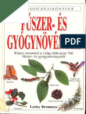Hideg tél: melengető gyógynövények és egyéb tippek - GyógyfüvesKertem