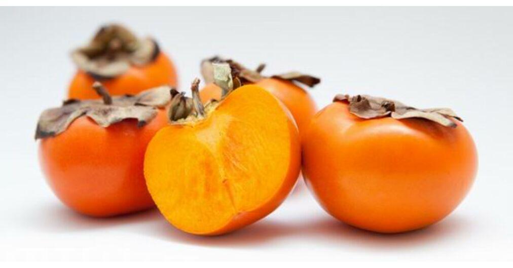 Datolyaszilva, a hangavirágú ébenfafélék isteni gyümölcse | ZAOL