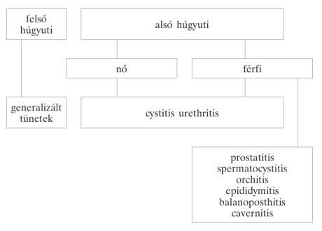 indometacin az alsó végtagok varikózisában