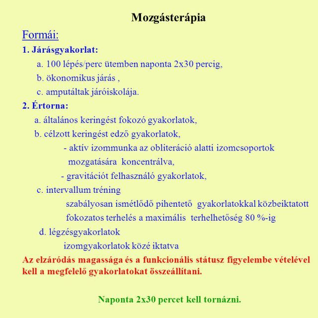 2011_0001_545_04_Magyarito_szotar
