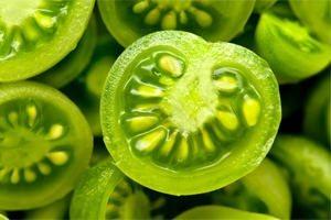 zöld dió visszér kezelésére)