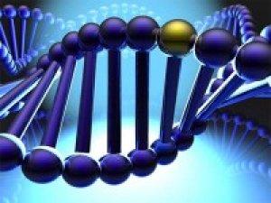 hogyan lehet megkülönböztetni a trombózist a visszerektől