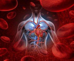 A varikózus vénák kezelése: jelzések, hogyan történik az eljárás - Diagnosztika September