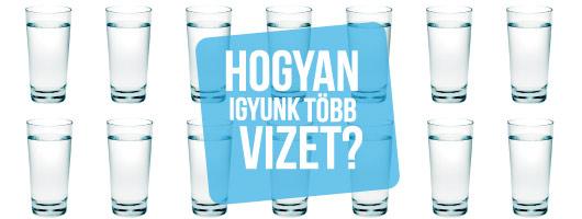 mennyi vizet kell inni visszérrel)