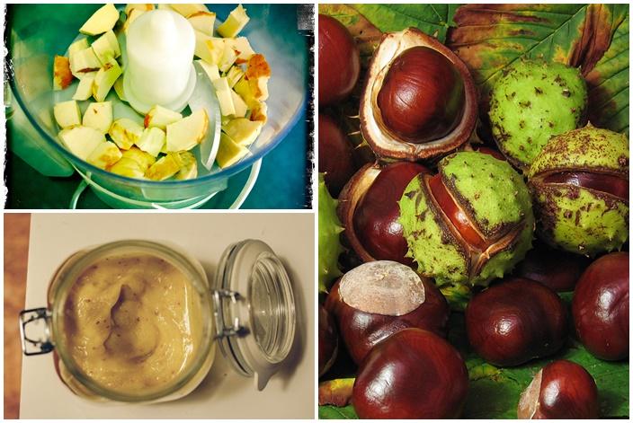 gesztenye gyümölcs visszér recept