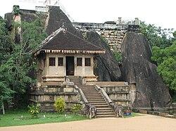 Srí Lankából származó visszérolaj