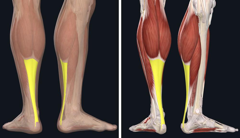 a lábak varikózisának megelőzése szülés után
