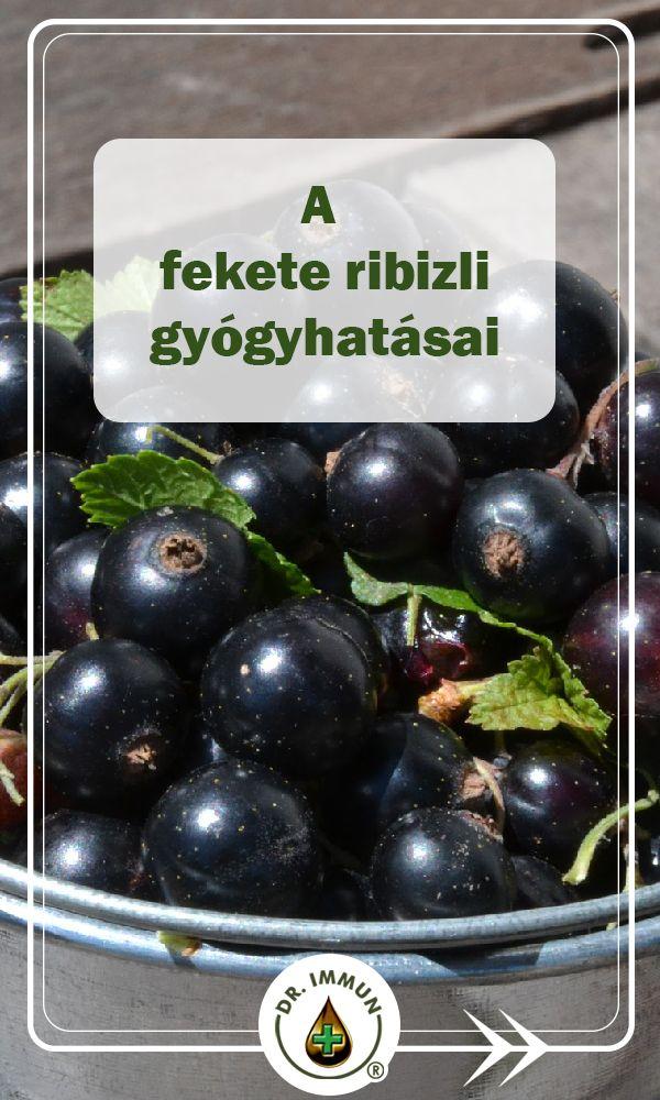 Fekete ribizli gyógyhatása | DR IMMUN.com